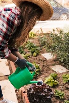 Giovane giardiniere femminile che innaffia le piante nel giardino