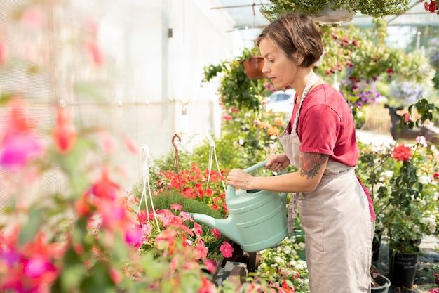 Giovane giardiniere femminile o operaio di serra con annaffiatoio prendersi cura delle piante sull'aiuola prima di venderle