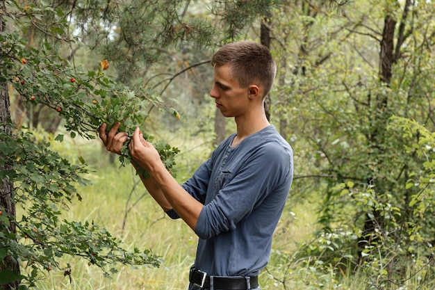 Giovane ragazzo che raccoglie le bacche selvatiche