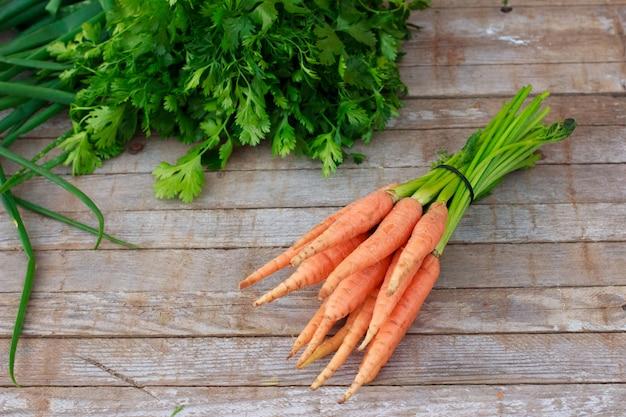 Giovani carote fresche ed erbe verdi su vecchio fondo di legno