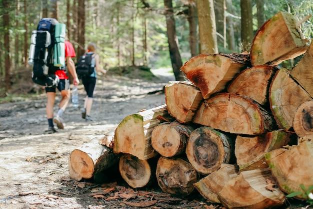 Giovani che fanno un'escursione con gli zainhi nella foresta