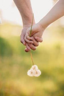 Giovani coppie amorose che si tengono per mano con il mazzo dei denti di leone nel parco di estate
