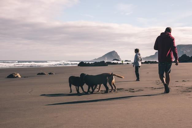 Giovani coppie che camminano con i loro cani sulla spiaggia