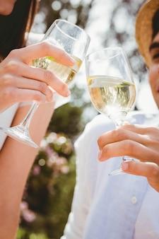 Giovani coppie che tostano un bicchiere di vino nel picnic