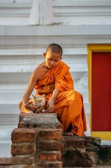 Giovani monaci del principiante che giocano gatto in vecchio tempio alla provincia di ayutthaya, tailandia
