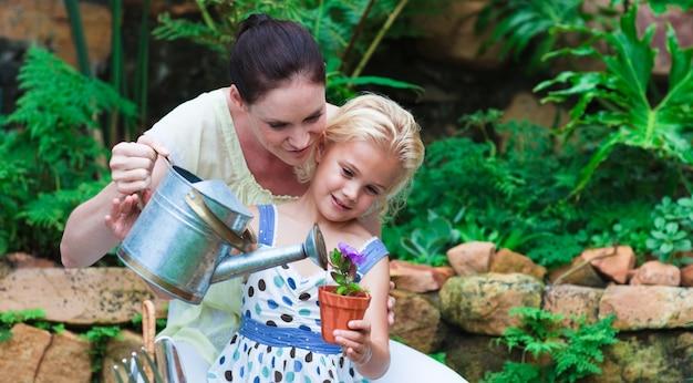 Giovani piante di innaffiatura della figlia e della madre