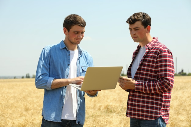 Giovani uomini con il computer portatile nel campo dell'orzo. attività di agricoltura. agricoltura