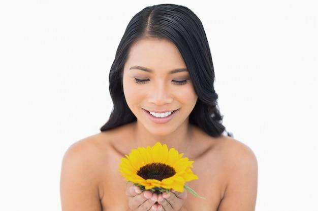 Girasole di modello moro naturale sorridente della tenuta