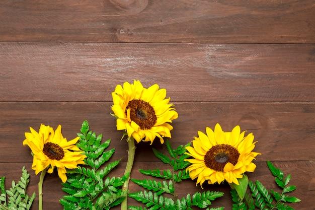 Girasoli e foglie di felce su fondo di legno