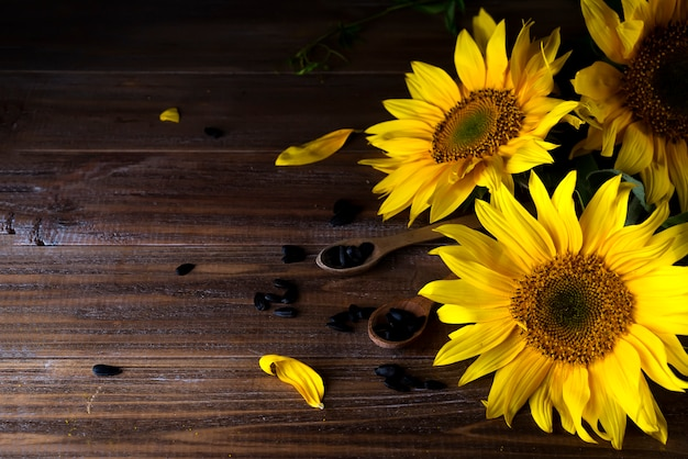 Girasoli gialli con semi