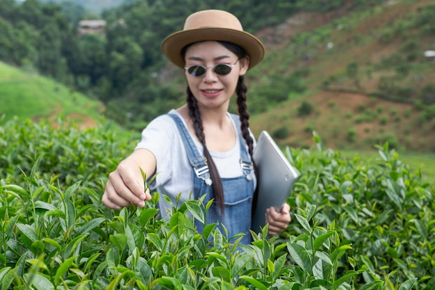 Gli agricoltori in possesso di compresse, controllare il tè, concetti moderni.