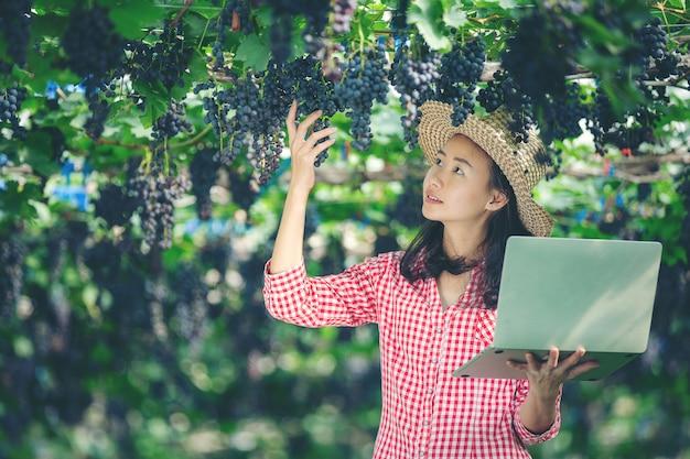 Gli agricoltori sono felici di vendere uva da mercato online