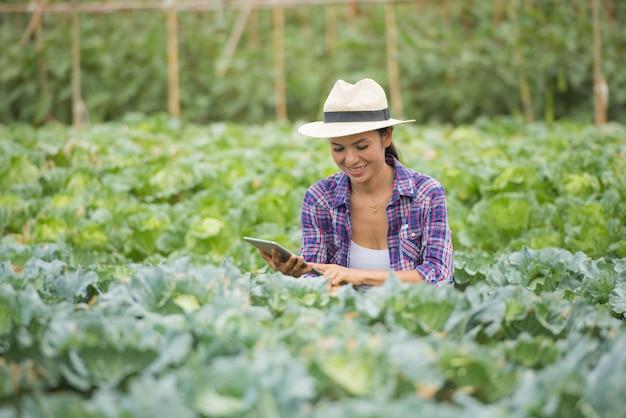 Gli agricoltori stanno lavorando in una fattoria di verdure. controllo di vegetali utilizzando la tavoletta digitale
