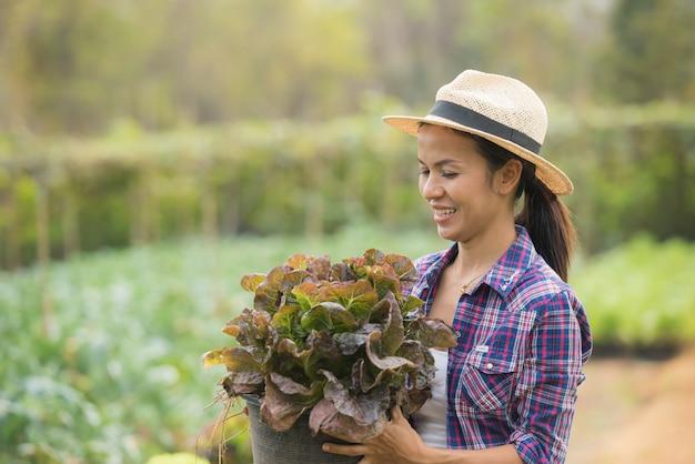 Gli agricoltori stanno lavorando nella fattoria di lattuga di quercia verde