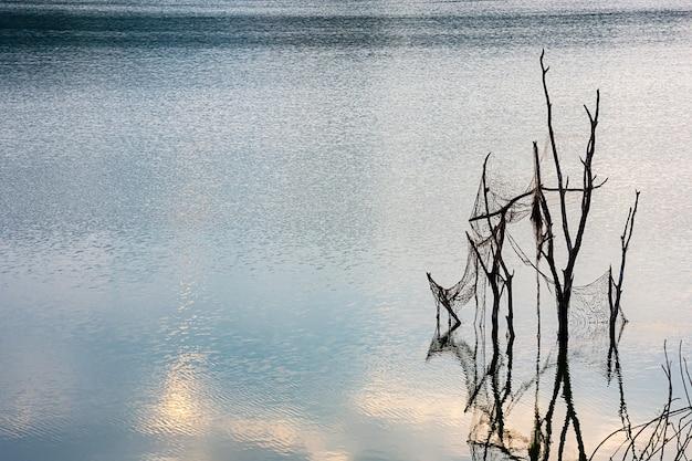 Gli alberi muoiono in acqua e le reti da pesca alla diga di wang bon nakhon nayok, tailandia