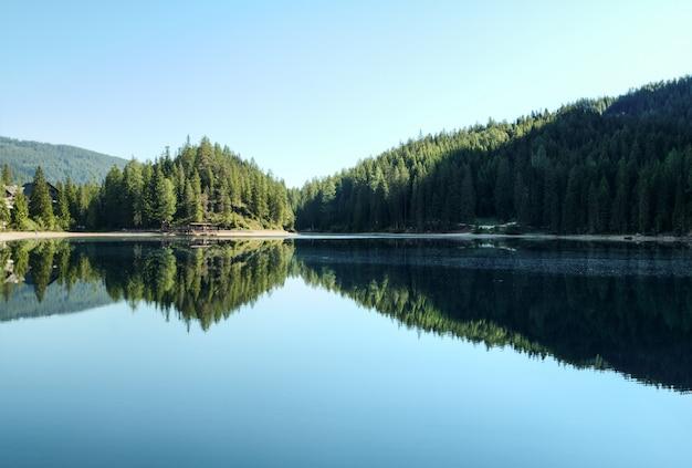 Gli alberi si avvicinano allo specchio d'acqua
