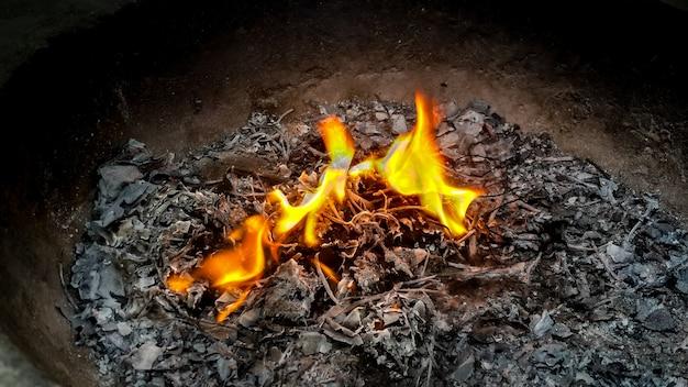 Gli incendi bruciano causando problemi di inquinamento atmosferico e distruggono anche il mondo atmosferico.