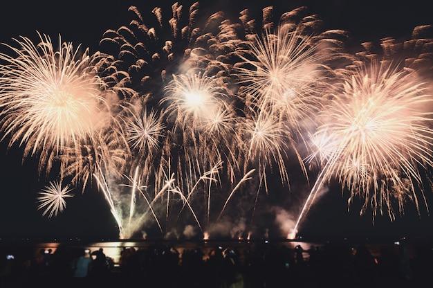 Gli spettatori stanno guardando fuochi d'artificio colorati nel cielo notturno sulla spiaggia