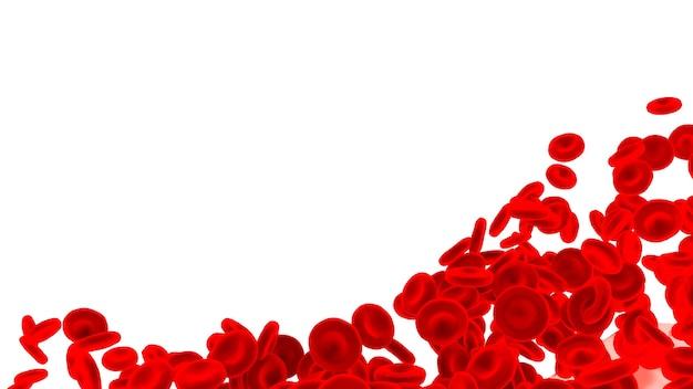 Globuli rossi isolati su fondo bianco.