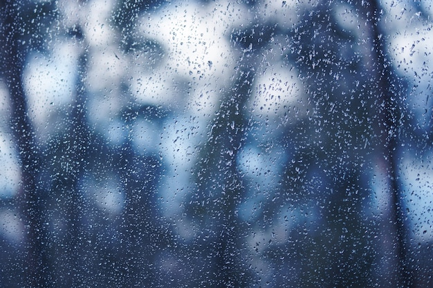 Gocce d'acqua sulla finestra. vista attraverso la finestra di legno, foresta, giardino. sfondo dai toni tenui nel colore blu classico 2020.