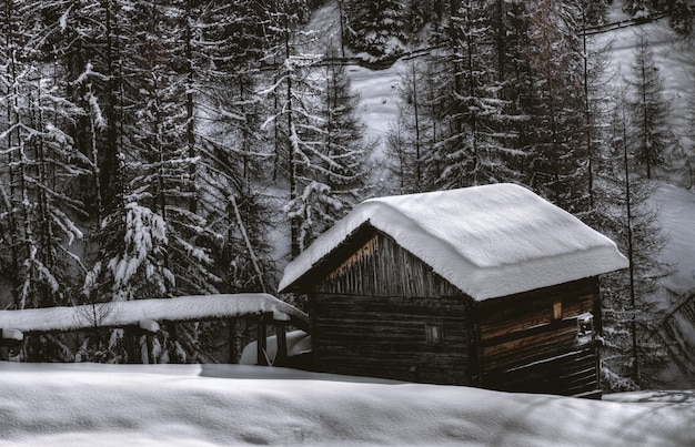 Granaio di legno marrone durante la neve