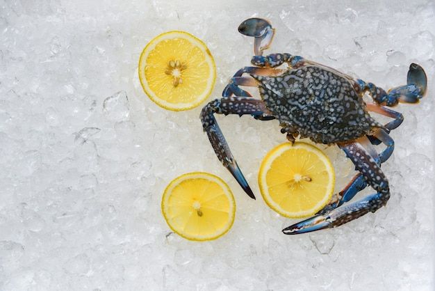 Granchio di frutti di mare su sfondo di ghiaccio nuoto blu fresco granchi e limone