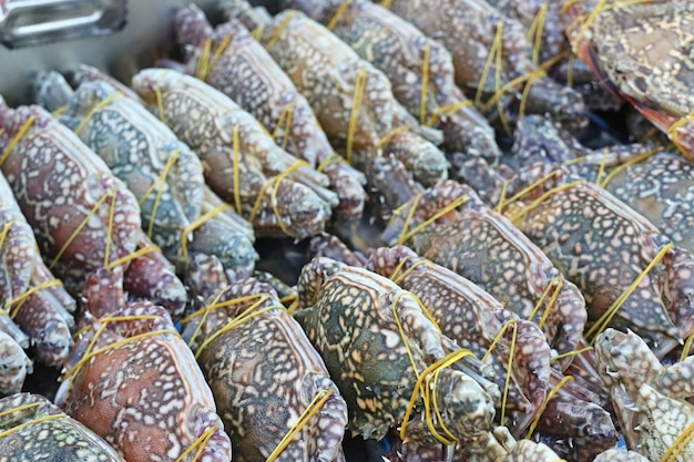 Granchio fresco nel mercato