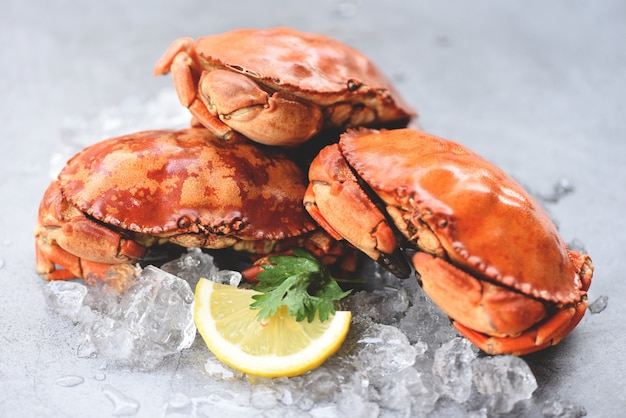 Granchio fresco su ghiaccio e limone per insalata sul piatto - frutti di mare cucinati dei granchi