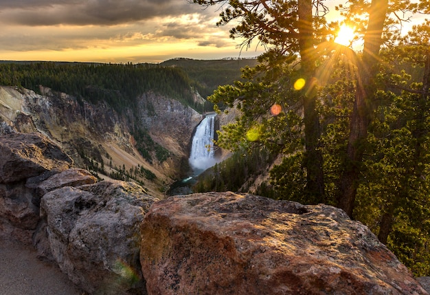 Grand canyon del parco nazionale di yellowstone