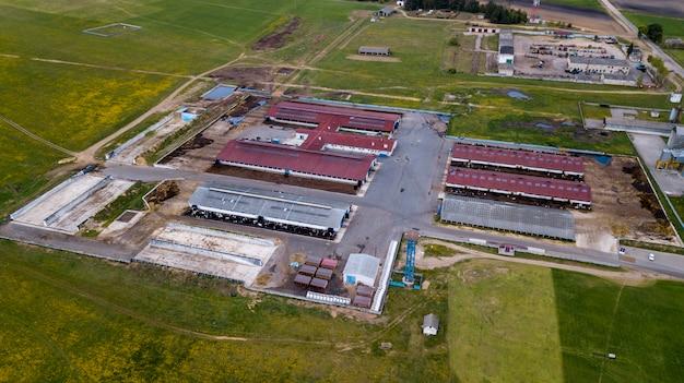 Grande allevamento di maiali. riprese serali. vista aerea