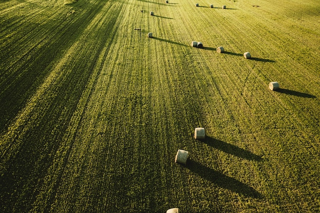 Grande bellissimo campo agricolo con pile di fieno sparato dall'alto