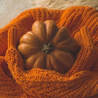 Grande zucca arancione su un maglione caldo. zucca nel morbido pullover. ringraziamento - zucche arancioni.