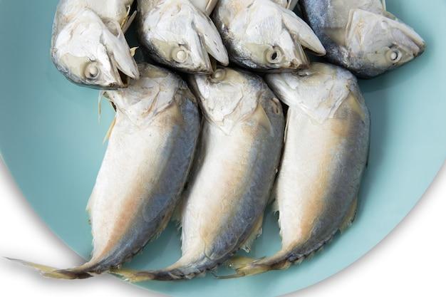 Grandi dimensioni di pesce sgombro al vapore sulla piastra blu su sfondo bianco