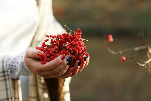 Grandi grappoli di viburno rosso in mani femminili. il concetto dell'immagine autunnale
