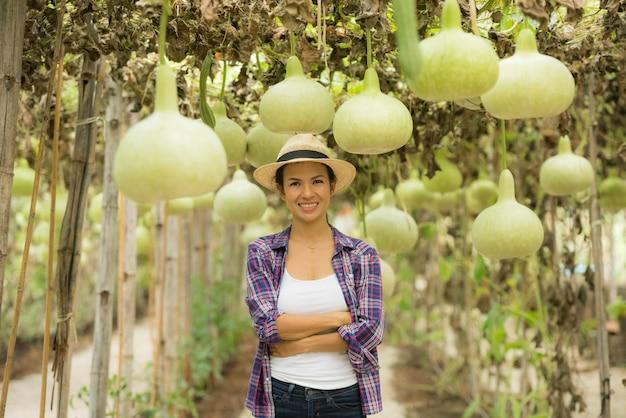 Grandi palle di zucca a fiaschetta in aziende agricole che coltivano verdure invernali fredde in thailandia