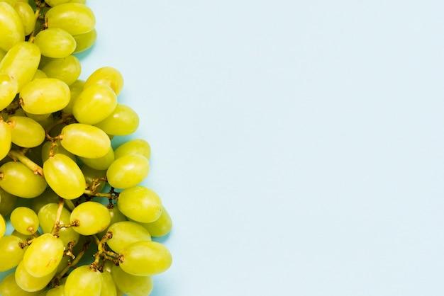Grappolo d'uva su sfondo blu
