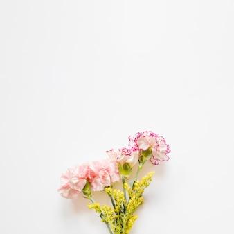 Graziosi garofani e fiori gialli