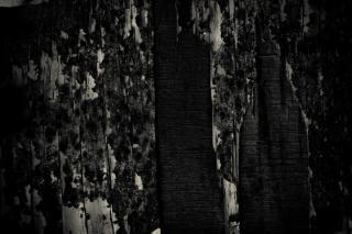 Grunge texture legno, nero