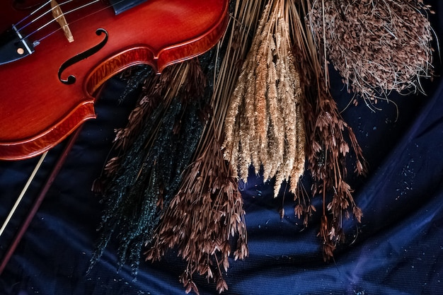 Gruppo di fiori secchi e violino frontale messo su tela nera