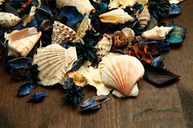 Gruppo di pot-pourri e shell