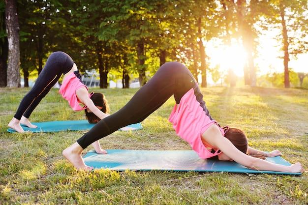 Gruppo di ragazze impegnate nel fitness o yoga sul prato contro il tramonto