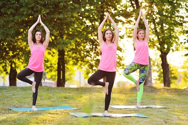 Gruppo di yoga - parecchie ragazze giovani e belle sono agganciate nella forma fisica sull'erba verde sul tramonto