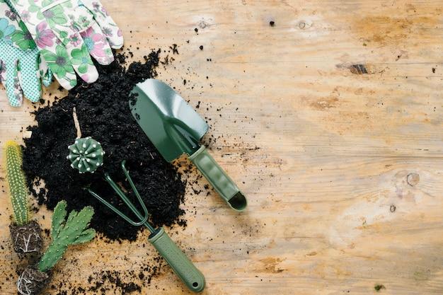 Guanti a mano con stampa floreale; sporcizia nera; piante succulente e attrezzature da giardinaggio sulla scrivania in legno