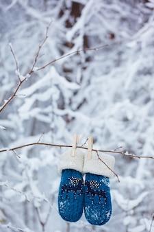 Guanti e guanti dei bambini che appendono su un ramo nella foresta di inverno