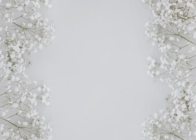 Gypsophila su sfondo grigio con copia spazio al centro