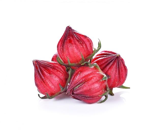 Hibiscus sabdariffa o frutti di rosella isolati su fondo bianco