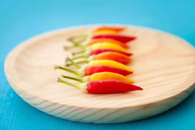 Hot chili peppers colorati in fila sul piatto