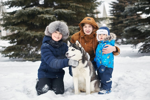 I bambini escono e giocano con il cane husky in inverno. i bambini si siedono sulla neve e accarezzarono il cane husky