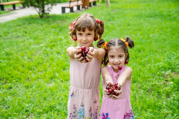 I bambini mangiano le ciliegie in estate.