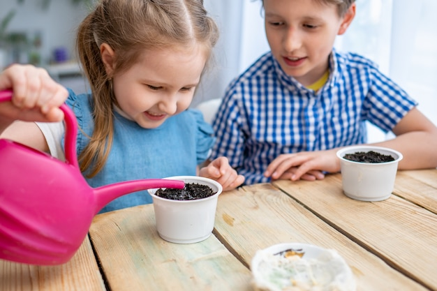 I bambini seminano semi di zucca germogliati in vasi con la terra e li innaffiano.